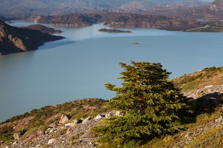 Top view of lake Nordenskjold. National Park Torres del Paine. Patagonia. Chile.