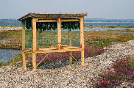 Drying box for drying fish. Magadan region. Stock Photo