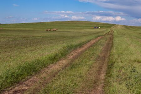 Country road disappearing into the distance. Steppes Of Khakassia. Russia.