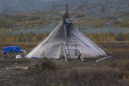 The lone tent of reindeer with sleds. Polar Urals. Russia.