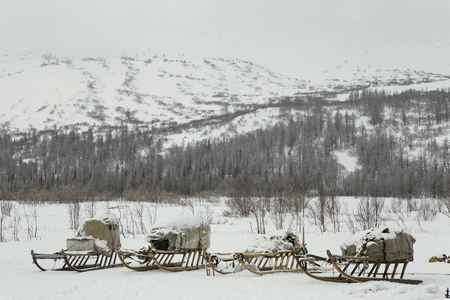 A number of sledges with a load of snowy mountains. The valley of the river Sob. Polar Urals. Russia.