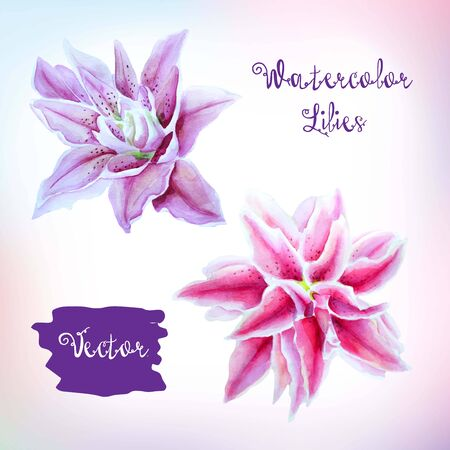 lily flowers set: Set of beautiful tropical watercolor flowers.