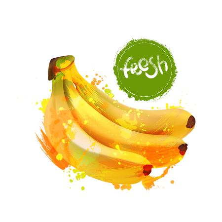 healthful: Fresh bananas can be used  for different projects. Illustration