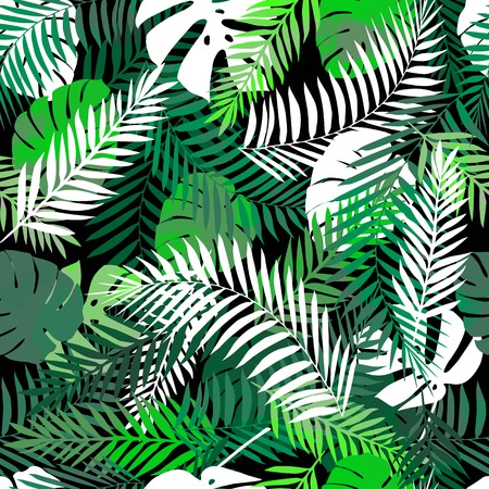 sunshine: Summer tropical background or wallpaper for different projects.