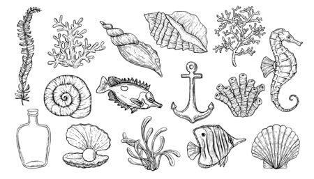 Coquillage, algues, ancre, hippocampe et poisson. Créatures sous-marines dessinées à la main.