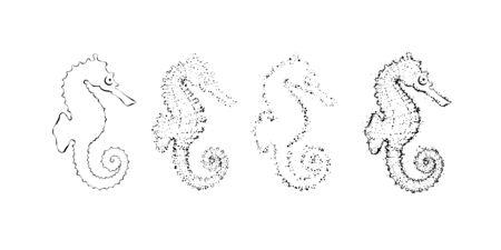 Hand drawn seahorse constuctor. Outline sea design element with dots. Illusztráció