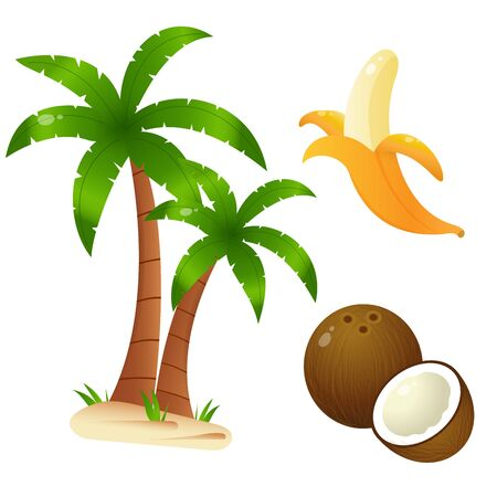 Color images of cartoon palm tree with banana and coconut on white background. Fruits and plants. Vector illustration set for kids. Ilustração