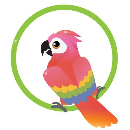 Color image of colorful parrot on white background. Pets. Vector illustration for kids.