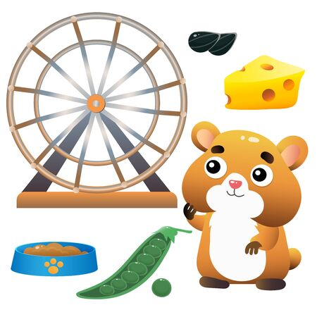 Color images of cartoon hamster, of feeder and wheel on white background. Pets. Vector illustration set for kids.