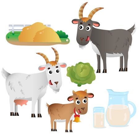 Color images of goat mum and goat dad with kid on white background. Farm animals. Vector illustration set for kids.