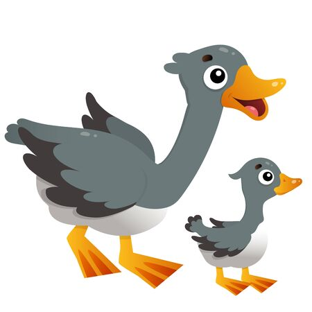 Color image of cartoon goose with gosling on white background. Farm animals. Vector illustration for kids.