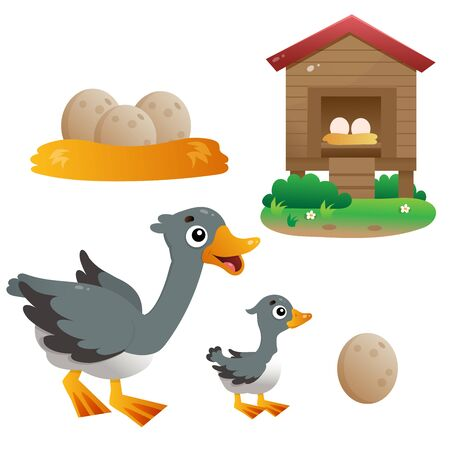 Color images of cartoon goose with gosling on white background. Farm animals. Vector illustration set for kids. Иллюстрация