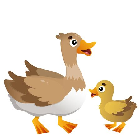Color image of cartoon duck with duckling on white background. Farm animals. Vector illustration for kids. Illusztráció