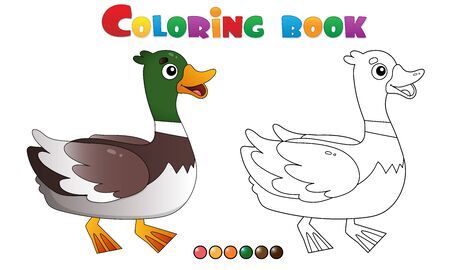 Coloring Page Outline of cartoon duck or drake. Farm animals. Coloring book for kids.