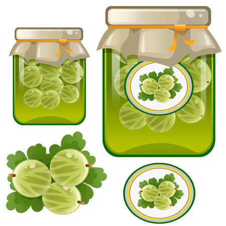 Color image of jar of gooseberry jam. Berries and fruits. Food and cooking. Vector illustration.