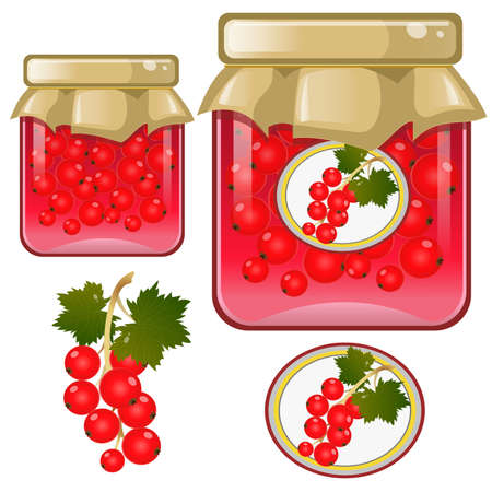 Color image of jar of red currant jam. Berries and fruits. Food and cooking. Vector illustration.