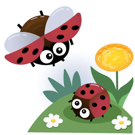 Color image of little ladybugs on white background. Insects and bugs. Vector illustration for kids.