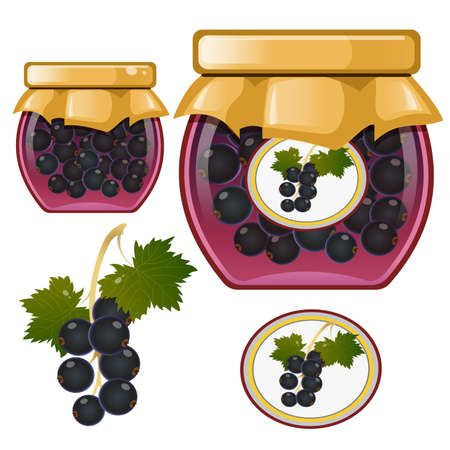 Color image of jar of blackcurrant jam. Currant. Berries and fruits. Food and cooking. Vector illustration. Illustration