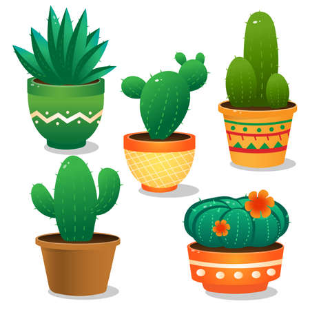 Color images of cactus on white background. Houseplants or indoor plants. Vector illustration set. Vettoriali