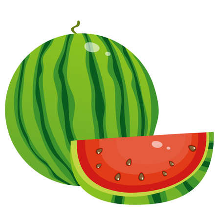 Color image of watermelon on white background. Berry and fruits. Vector illustration.