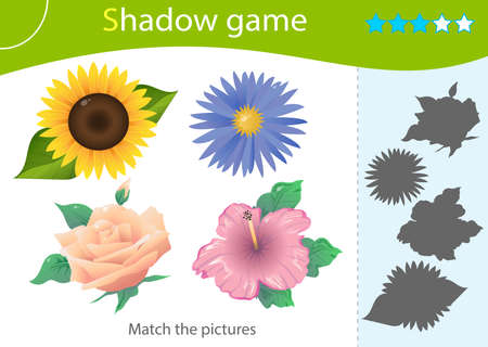 Shadow Game for kids. Match the right shadow. Color images of flowers. Rose, sunflower, mallow, aster. Worksheet vector design for children and for preschoolers.