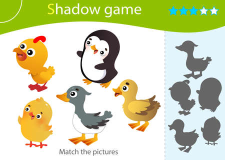 Shadow Game for kids. Match the right shadow. Color images of birds. Duckling, chick, gosling, turkey, penguin. Worksheet vector design for children and for preschoolers.
