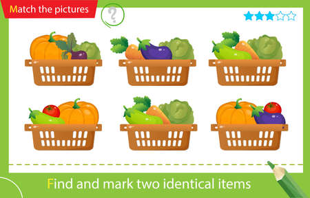 Find and mark two identical items. Puzzle for kids. Matching game, education game for children. Baskets of vegetables. Cabbage, beetroot, tomato, eggplant, pumpkin, carrot, zucchini. Worksheet vector design for preschoolers