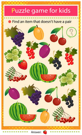 Find a item that does not have a pair. Puzzle for kids. Matching game, education game for children. Color set of berries and fruits. Black and red currant, strawberry, apricot, watermelon, gooseberry, grape, cherry, rowan and plum. Worksheet to develop attention.