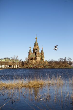 St. Peter and Paul Cathedral in Peterhof, the suburb of St. Petersburg, doesnt belong to a palace complex