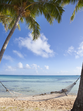 Hammock between palm trees on the seashore and the blue sky with clouds Stock Photo