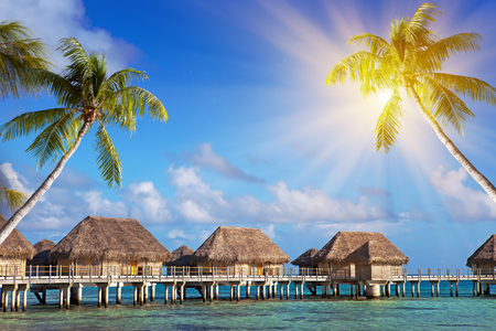 authentic houses with a straw roof over water and inclined palm trees over the sea. Polynesia.