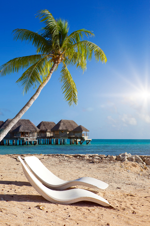 Two chairs on the sandy beach, a palm tree over them and houses over water of the blue sea. Polynesia. Stock fotó