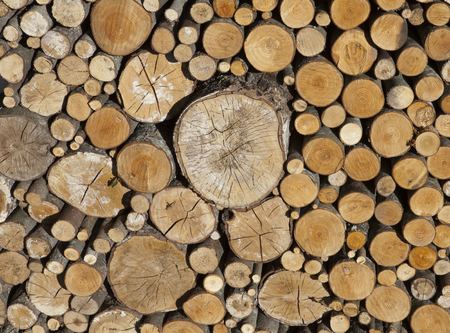 Woodpile. A log of the different size