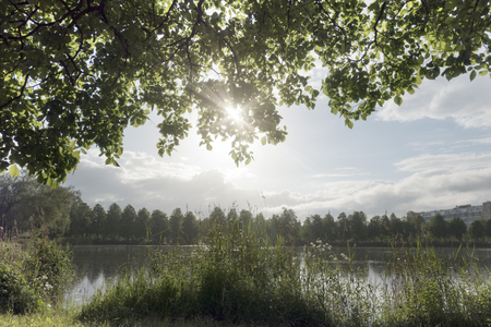the sun shines through tree branches over the lakein the summer day Stock fotó
