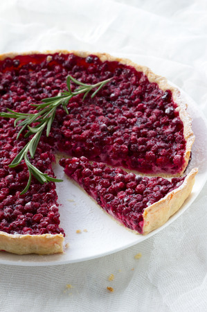 bilberry: Tart with red bilberry on a white plate