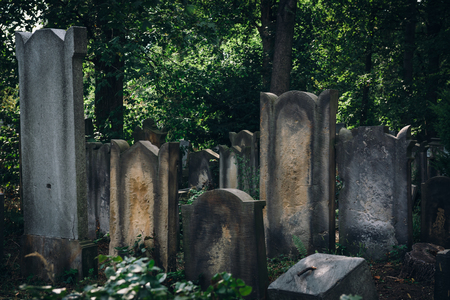 Historic Old Jewish cemetery in Wroclaw, Poland