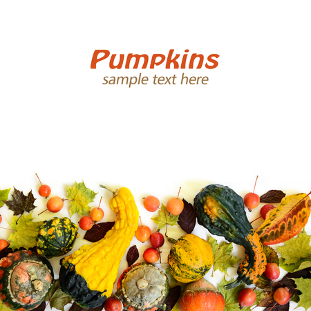 Pumpkins with fall leaves and paradise apples over white background. Top view.