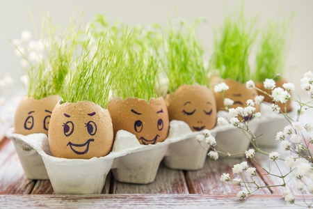 The fresh green grass growing in an egg shell with the funny persons drawn on it 写真素材