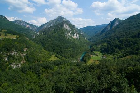 tara: Montenegro. Tara Canyon