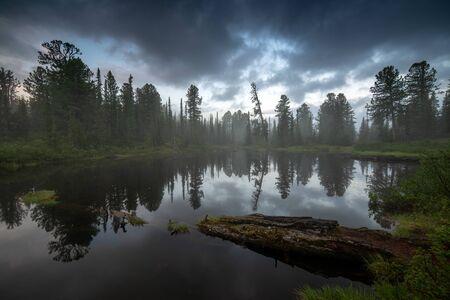 Summer taiga morning. Ergaki, Russia Imagens