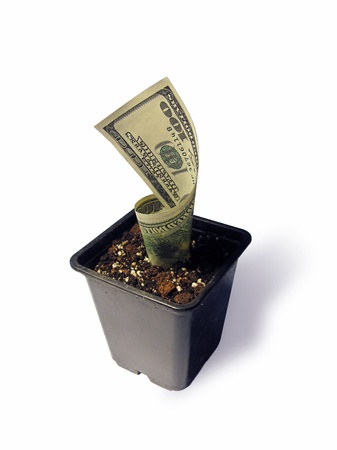 devaluation: Conception of growth of money