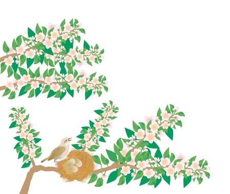 usignolo: un usignolo canta una canzone seduto vicino a nido