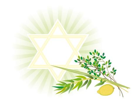 sukkot: E 'accettato di dare a tutti i quattro tipi di piante ciascuno dei quali simboleggia il certo tipo di persone. Archivio Fotografico