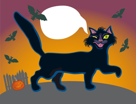 impudent: An independent impudent black cat goes for a walk at night Stock Photo