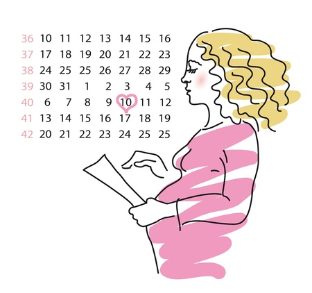 Picture of expectant mother on a background a calendar with the obvedenoy date of births