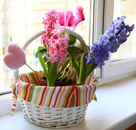 spring flowers in a small basket on a balcony Stock Photo - 13557974
