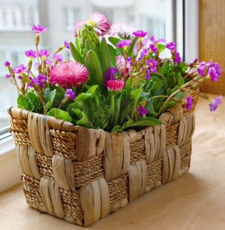 spring flowers in a small basket on a balcony
