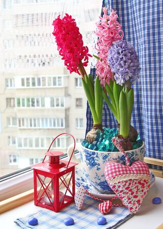 conflagrant: Beauty hyacinths and lantern with a conflagrant candle on a window Stock Photo