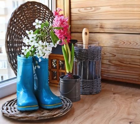 발코니에서 정원을위한 발코니 심취의 창에 어두운 파란색 고무 무릎 부츠와 핑크 히아신스 꽃 피는 체리의 장식 스톡 콘텐츠