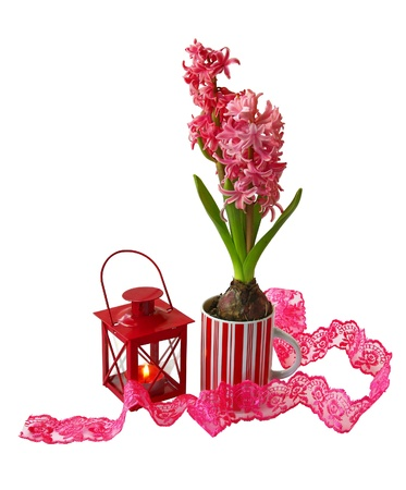 consuetude: A decorative composition with burning lantern and red hyacinth on white background